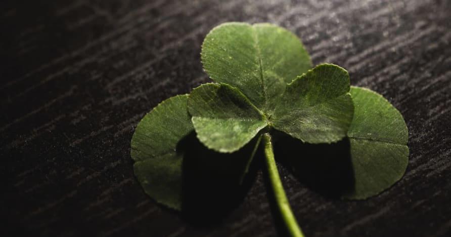 ギャンブルのためのラッキーチャーム:シリアルの箱の後ろの魔法